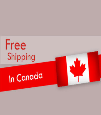 Free Shipping or Delivery
